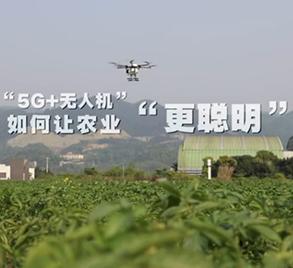 """""""5G+無人機""""如何讓農業""""更聰明""""?"""